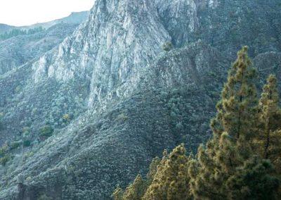 roque-grande-hike-trail