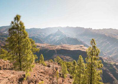 Landscape central Gran Canaria