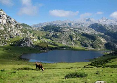 pyrenees-mountains-spain-hiking