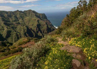 path-anaga-natural-park