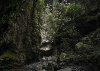Barranco-del-agua-los-tilos
