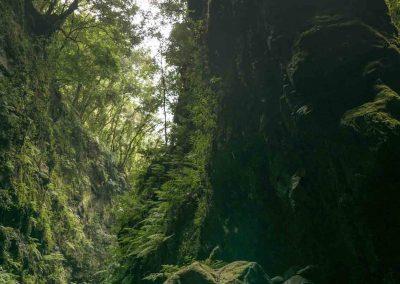 canyon-los-tilos-agua