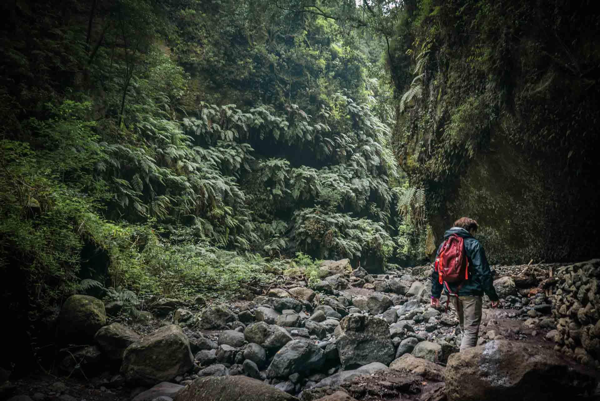 hiker-in-la-palma-tilos